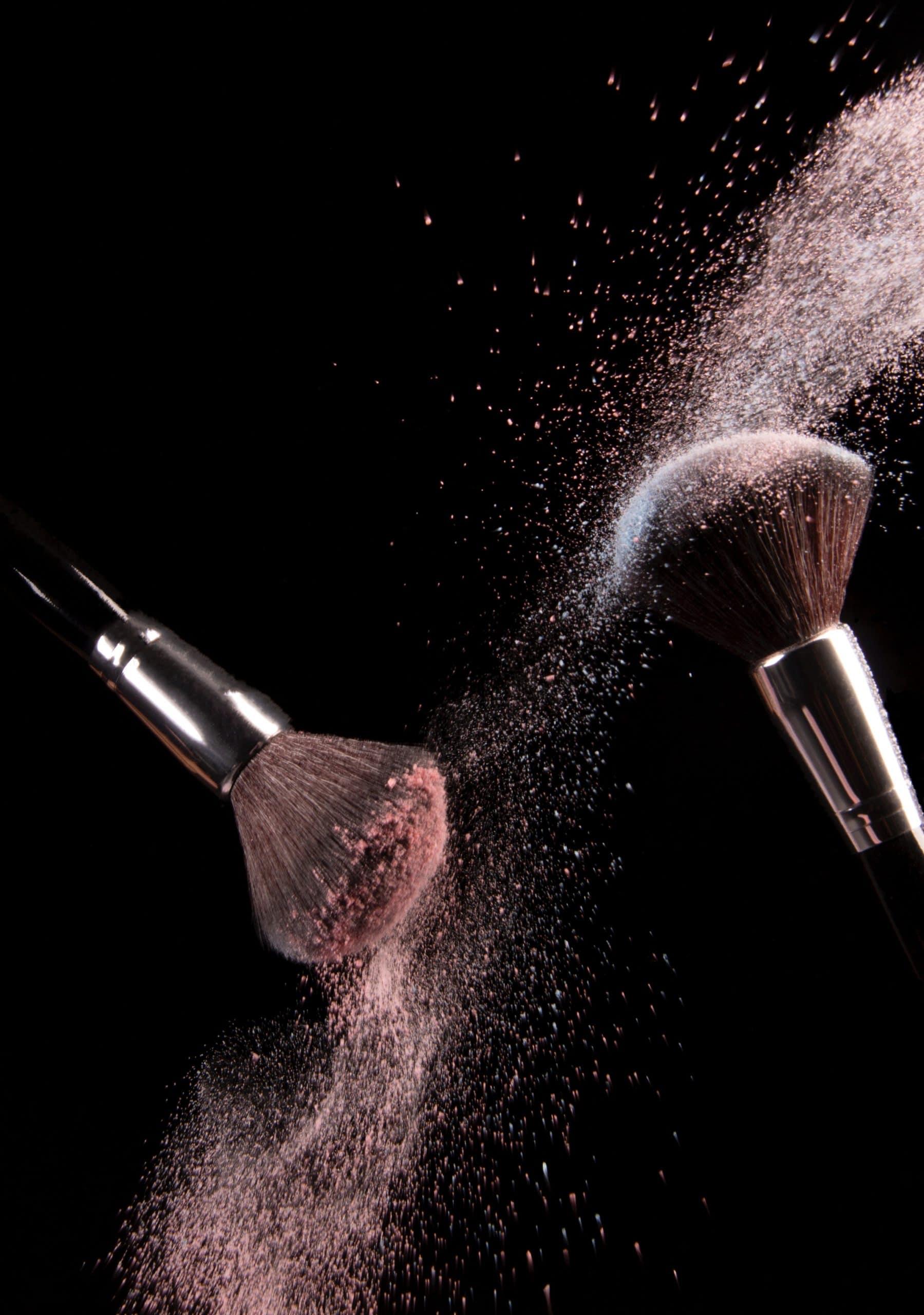 Blush Brush Makeup Powder Cosmetics